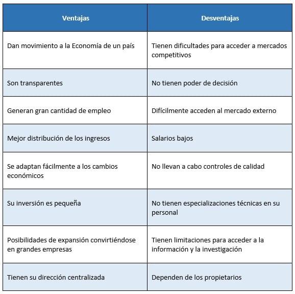 ventajas y desventajas de una microempresa